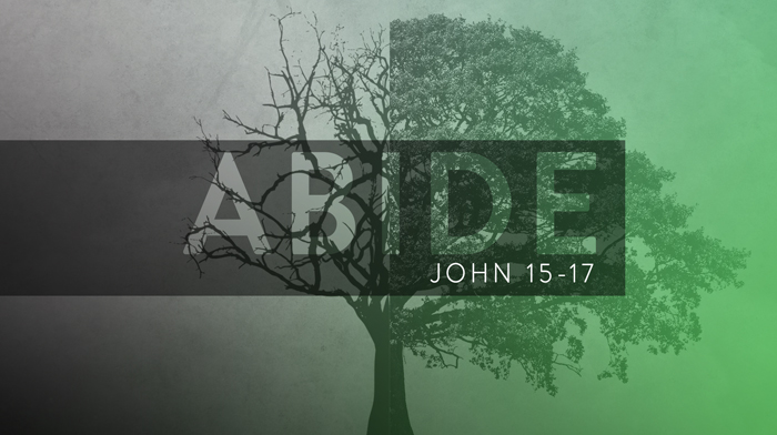 Made to Abide